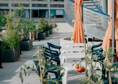 hotel-des-thermes-terrasse-tomates