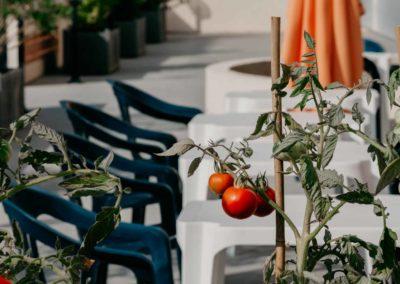 hotel-des-thermes-dejeuner-en-terrasse